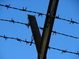 photo of jail, containment, barbed wire, prison, jail
